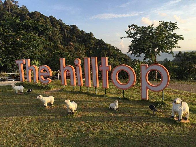 什么是谷歌Hilltop算法